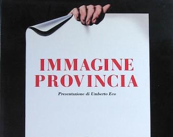 Italian Poster Art Book - Immagine Provincia - Vintage Coffee Table Book - Graphic Design Reference Book Typography Art - Italian Home Decor