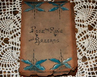 Victorian book, hand painted, blue dragonflies on leather cover, parlor book, early 1900s