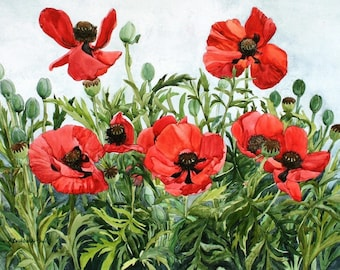 Red Poppy Notecards, Set of Five Watercolor Reproductions