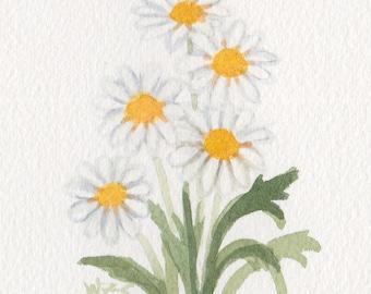 Daisies 5x7 Matted Original Watercolor  by Wandas's Watercolors
