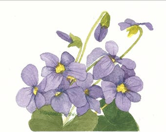 Purple Violets from my Garden Watercolor Reproduction