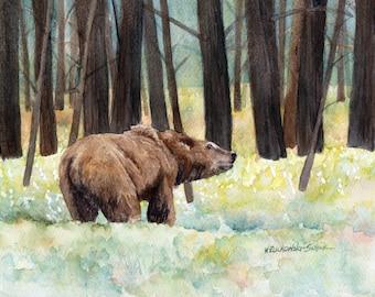 Yellowstone Grizzly  Watercolor Reproduction by Wanda Zuchowski-Schick
