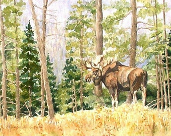 Set of four  5 x 7 Yellowstone National Park Wildlife Watercolor Reproduction Note Cards