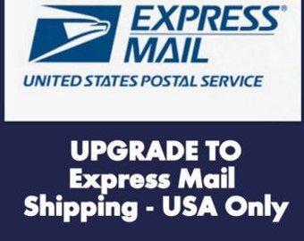 Priority Express Upgrade USA Only, 1-2 Day Shipping Upgrade