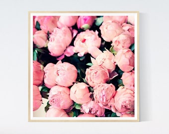 Peony Pink Rose French Shabby Provincial 18th Century Canvas Print A3