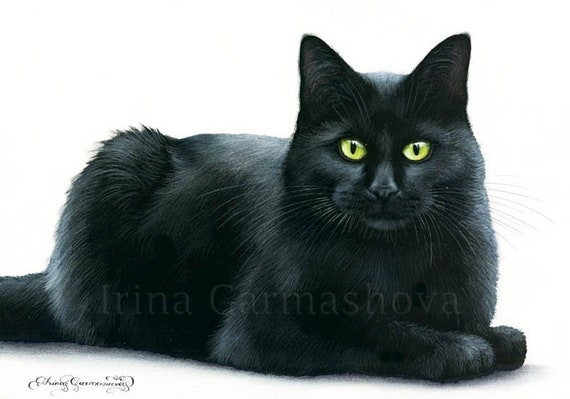 Black Cat Print Content by Irina Garmashova