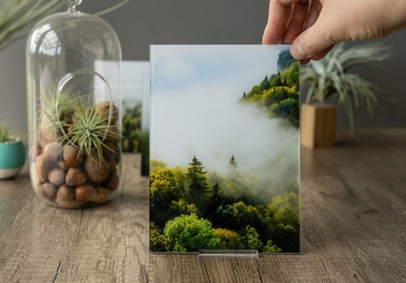 Acrylic photo print of misty forest, tree art print, acrylic glass wall art, photo magnets fridge, bathroom decor, mom gift,