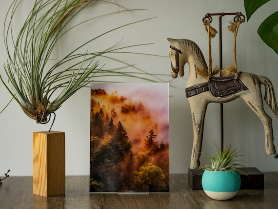 Acrylic photo print of burning forest, ready to use, photo magnets fridge, acrylic photo block, home office decor, collectible gift for mom