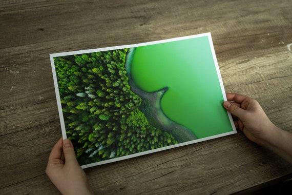 Emerald lake print, forest art print, forest fine art, Lithuania nature, mindfulness gift, Lake Print, Forest Wall Art, japandi wall art
