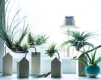 Air plant holder set, tiny house, air planter, air plant display, plant lover gift, unique planter