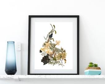 Dried flowers art print 8x10 Botanical print Floral decor Pressed flower art print Herbarium print Living room art Housewarming Gift