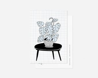 MONSTERA postcard / minimalist floral card
