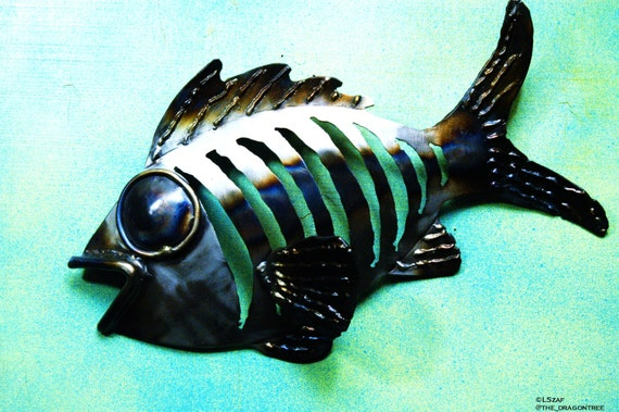 Frank the Fish, Handmade Metal Wall Sculpture. Whimsical Series