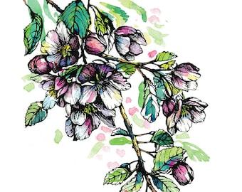 Apple Tree Flower Blossom Art Print, Watercolor print, Pink Flowers Wall Art, Floral Art Print, Home decor art, Apple blossom Illustration