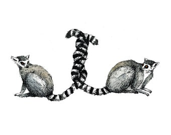 Lemurs with Tangled Tails Illustration; 8x10 Print; Ink and Watercolor; Wild Animal Art; Lemur Lovers; Animal Decor; Cute Animal Wall Art