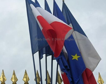 Original Photograph (Matted): French Flags at Palace of Versailles