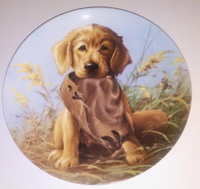Golden Retriever Springer Spaniel Puppy Dog Plates Lynn Kaatz Set of 2 Free  USA Shipping w Insurance and Tracking Included