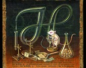 Year of the Rat art print, Hyaloid: A white rat chemist at work in the laboratory. Lab glass, alchemy oddity, crystals science lab mouse
