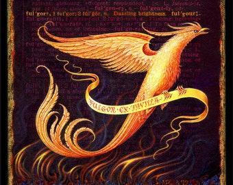 Phoenix art print, Fulgor: A phoenix rising from the ashes. Get well gift, fantasy art, encouragement gift, sympathy, inspiration, survivor