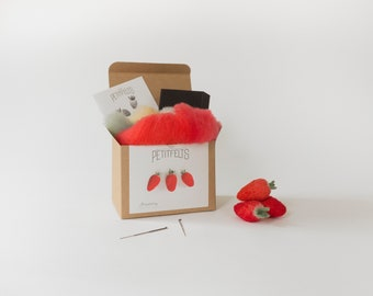 Needle Felting Kit. Strawberry Felting Kit. Felt Craft Kit. DIY Needle Felting. Craft Gift. Craft Kit.