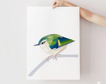 Rifleman print, Rifleman art, New Zealand art, Titipounamu, Kiwi birds, Kiwiana, New Zealand birds, New Zealand art, New Zealand wildlife