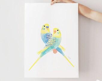 Budgie illustration, Budgie poster, Budgie print, Pet birds, Blue green budgie, Parakeets illustration, Lovebirds, Geometric bird, Bird pair