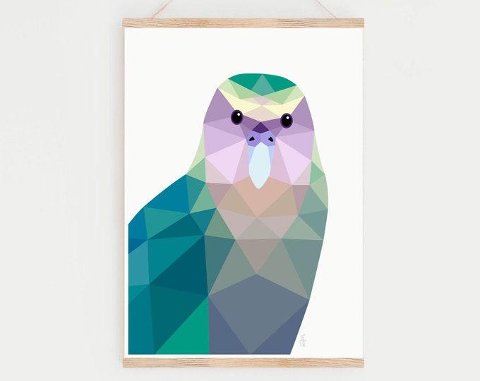 Featured listing image: Kakapo print, Kakapo illustration, Kakapo poster, Kakapo print, New Zealand native birds, Kiwi art, Kakapo art, New Zealand parrot, Kiwiana