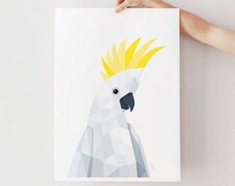 Cockatoo print, Cockatoo illustration, Cockatoo art print, Sulphur-crested cockatoo, Australian parrots, Australian birds, Australian art