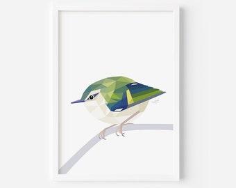 Rifleman Print | Titipounamu | Kiwi Birds | New Zealand Bird | Little Bird Art | New Zealand Forest | Kiwi Bach | Birdwatcher Art | Green