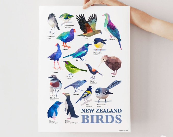 Featured listing image: New Zealand birds poster, Native kiwi birds, New Zealand print, New Zealand wildlife art, Tui, Kiwi, Kiwiana gift, Fantail, Kereru, Takahe