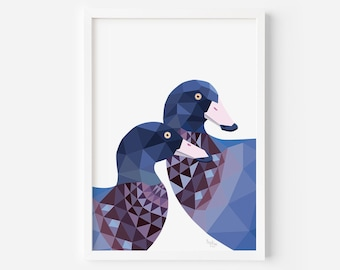 Blue Duck Print | Whio Print | Duck Art | New Zealand Print | New Zealand Duck | Kiwiana | NZ Art | New Zealand bird watcher | Kiwi Animals