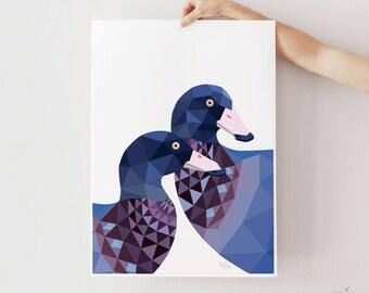 New Zealand art, New Zealand print, Whio, Blue duck print, New Zealand duck, Kiwiana art, NZ artist, New Zealand gift, Kiwi art, Tinykiwi