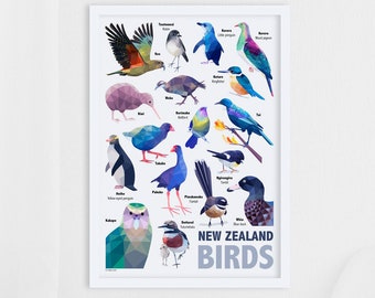 New Zealand print, New Zealand birds, New Zealand poster, New Zealand art, New Zealand wildlife, Tui print, Kiwi print, Kakapo, Kiwiana gift