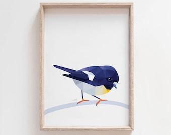 Tomtit illustration, New Zealand tomtit print, Tomtit art, New Zealand art, New Zealand native birds, Kiwiana bird art, New Zealand painting