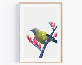 Bellbird Print | Bellbird Art | Native New Zealand Birds | New Zealand Art | New Zealand Wildlife | Kiwiana Art | Korimako | Kiwi Art