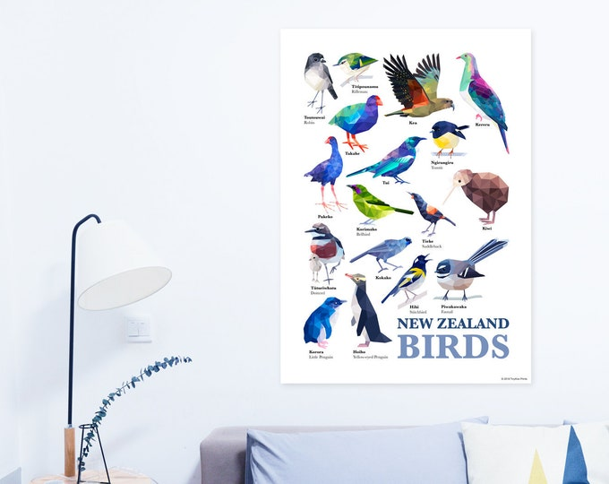 New Zealand birds poster, Native kiwi birds, New Zealand print, New Zealand wildlife art, Tui, Kiwi, Kiwiana gift, Fantail, Kereru, Takahe
