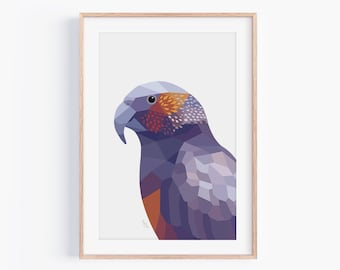 Kaka Print   New Zealand Bird   New Zealand Parrot   Zealandia   Wellington Art   New Zealand Poster   Parrot Art   Kiwi Home Decor   Kiwi