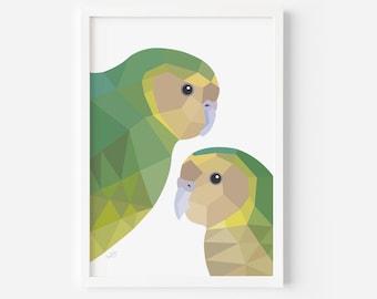 Kakapo Print | Kakapo Illustration | Kakapo Poster | New Zealand Birds | Kiwi Art | Kakapo Parrot | New Zealand Wildlife | Kiwiana Gift Idea