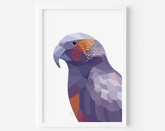 Kaka Print | New Zealand Bird | New Zealand Parrot | Zealandia | Wellington Art | New Zealand Poster | Parrot Art | Kiwi Home Decor | Kiwi