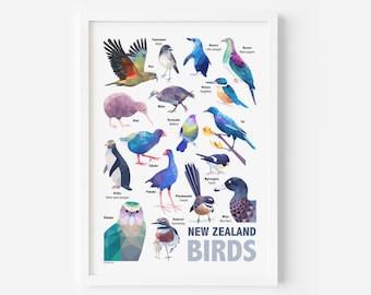 New Zealand Poster | Birds of New Zealand | New Zealand Birds | New Zealand Poster | New Zealand Art | New Zealand Wildlife | Tui Print