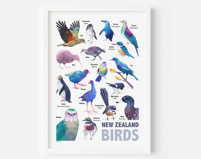 Featured listing image: New Zealand Poster | Birds of New Zealand | New Zealand Birds | New Zealand Poster | New Zealand Art | New Zealand Wildlife | Tui Print