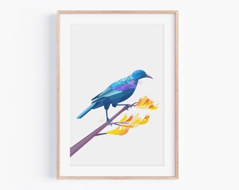 Tui Print | New Zealand Bird | Kiwiana | Kiwi Art | New Zealand Wall Art |  Tui Painting | Native New Zealand Birds | Kiwi Gifts | Tui Art