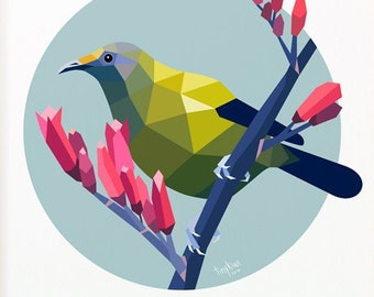 Bellbird fine art print, New Zealand birds, Korimako illustration, Flax, Kiwi art, Bellbird painting, Original New Zealand art, Circle print