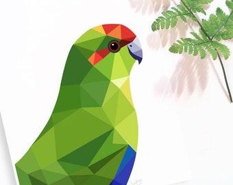 Kakariki illustration, New Zealand bird art, Kiwi art, Kiwi home,  New Zealand poster, Minimal wall decor, Modern animal art, Geometric art