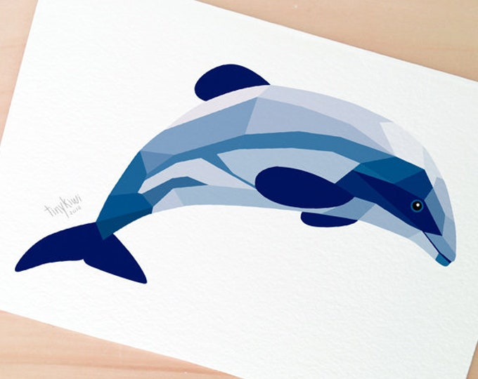 Maui dolphin New Zealand, Dolphin art, New Zealand dolphin, New Zealand wildlife, Kiwi wildlife art, Dolphin illustration, Kiwi art, Maui