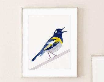 Stitchbird art, Hihi painting, New Zealand bird, Kiwi art, New Zealand animals, Geometric bird, Singing bird art, Aotearoa art, Kiwi gift