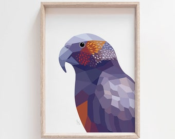 Kaka print, New Zealand print, New Zealand kaka, New Zealand birds, New Zealand parrot, Kea print, Kiwi art, New Zealand poster, Kiwi art