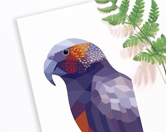 Kaka parrot,  New Zealand kaka, New Zealand birds, parrot illustration, Kea print, Kiwi bird art, New Zealand wildlife art, Geometric parrot