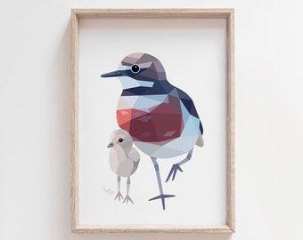 New Zealand dotterel print, Banded dotterel art, New Zealand sea birds, Kiwi bird art, Kiwi art, New Zealand wildlife, New Zealand plover