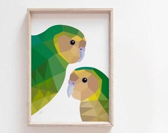 Kakapo print, Kakapo illustration, Kakapo poster, New Zealand native birds, Kiwi art, New Zealand birds, New Zealand gift, Kiwiana, NZ decor